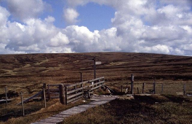 Border Fence near Auchope Cairn