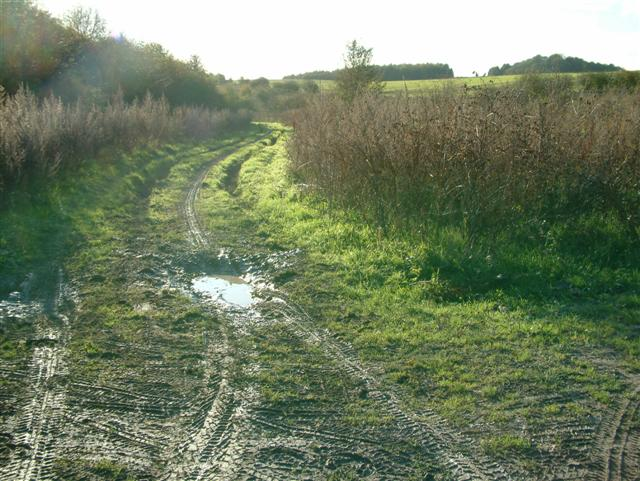 The track to Upper Hill Barn
