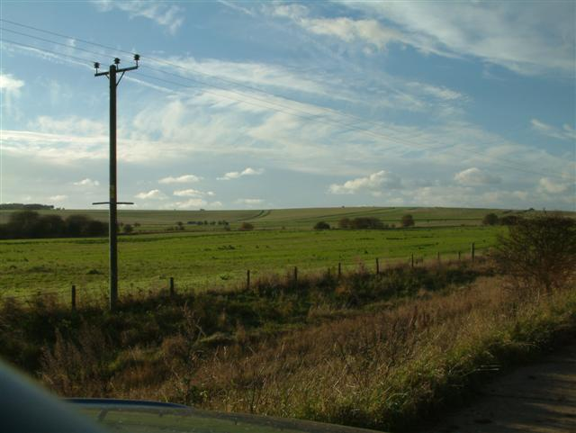 Looking West over Blewbury Down
