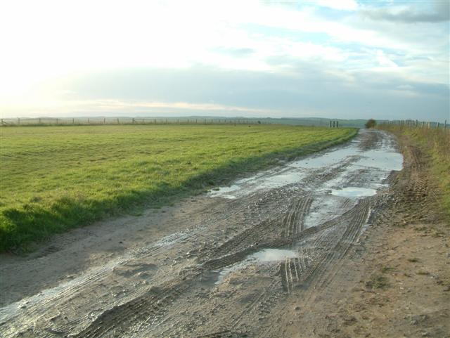 The Gallops by Upper Chance Farm