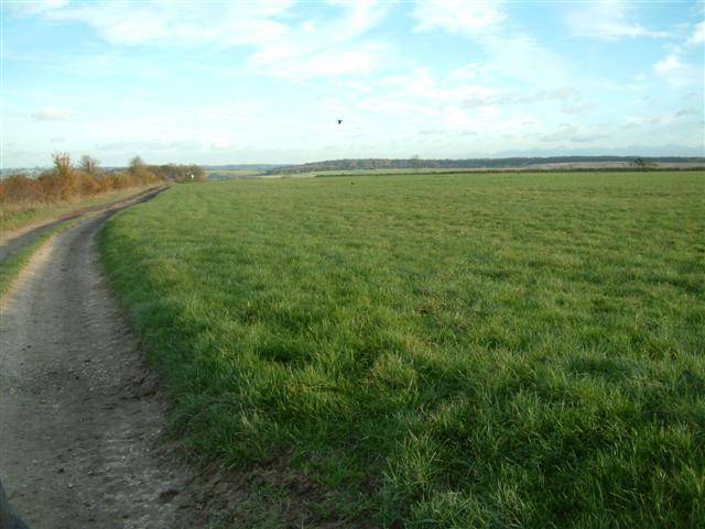 The track to Langdon Hill