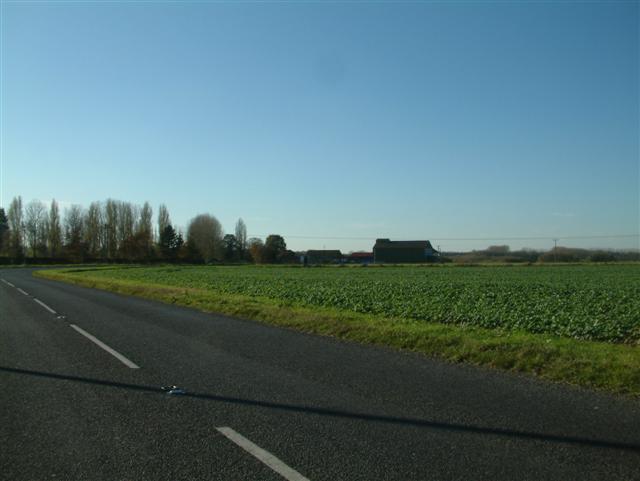 Zulu Farm