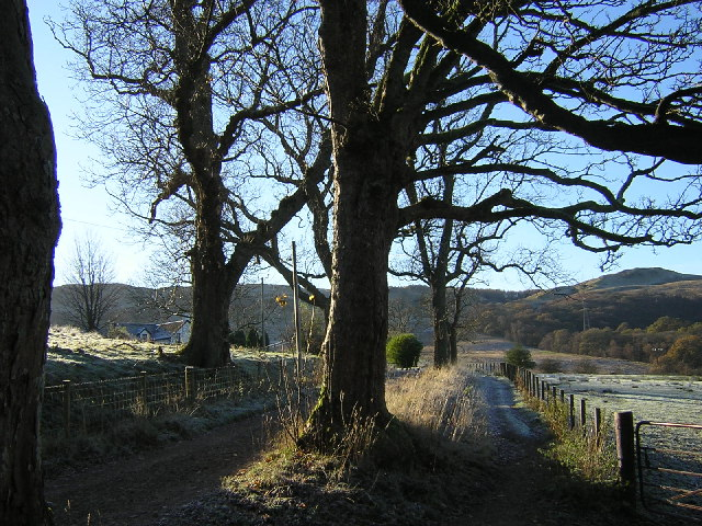 West Highland Way Near Dumgoyach