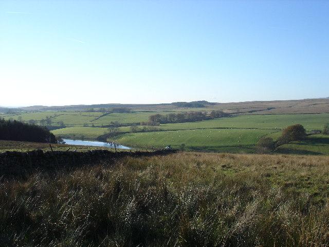 Winterburn Reservoir and grazing sheep