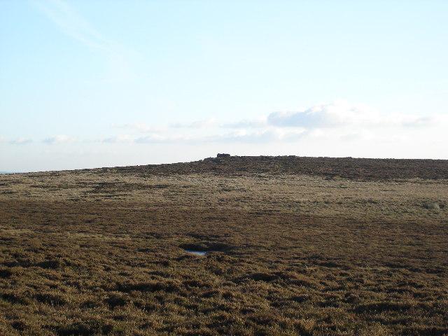 The peak of Bilton Ings