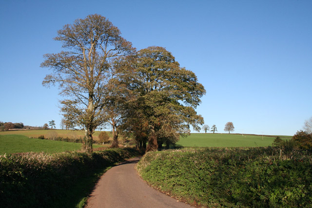 Bradninch: lane from Bradninch to Ellerhayes Bridge