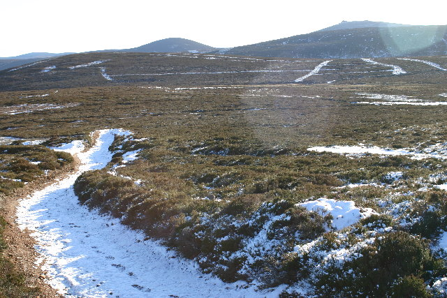 Moorland on Peter Hill