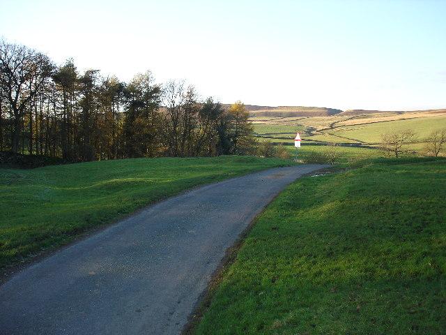 Lane near Gill Head