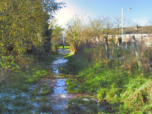 Bridle Path from County End