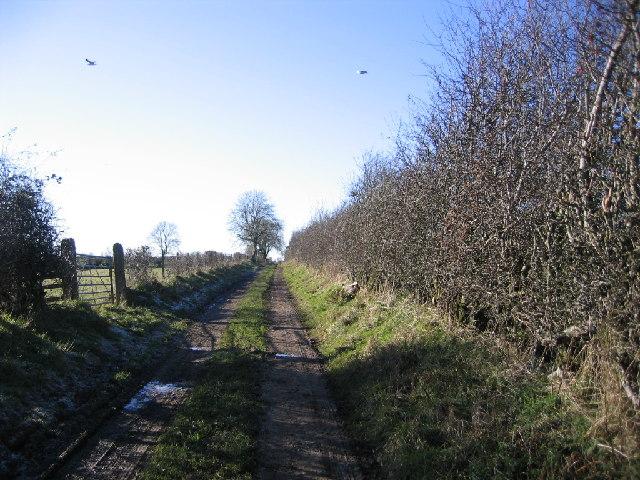 Green lane in Eaglesfield.