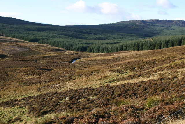 Moorland and forest in Glen Cochill