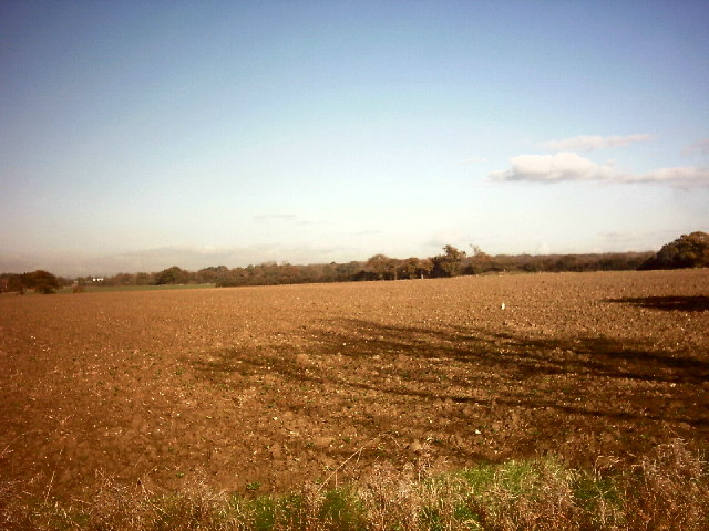 Newly sown field in November