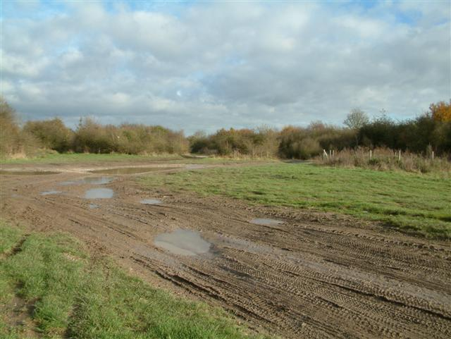 Cholsey Downs