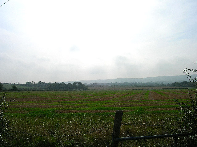 Farmland north of Selmeston
