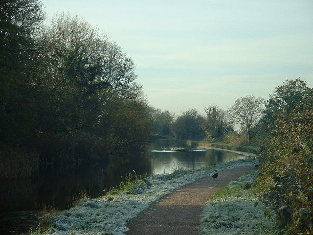 Lancaster Canal, near Carnforth