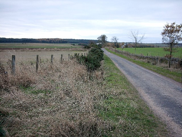 Road North of Nether Finlarg