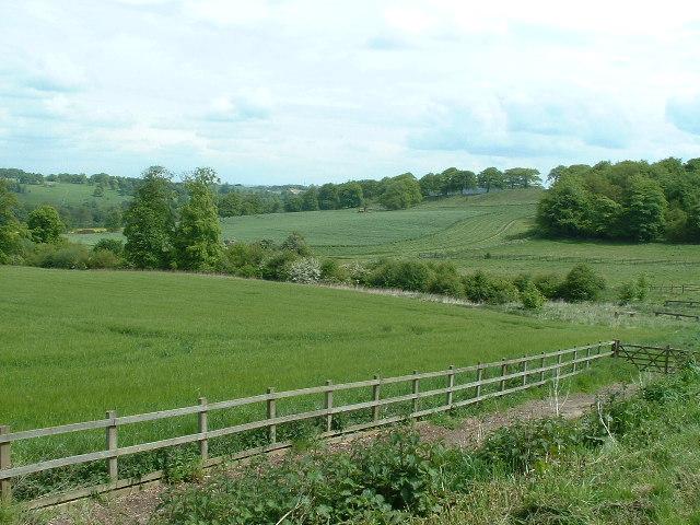 View across farmland from Longside