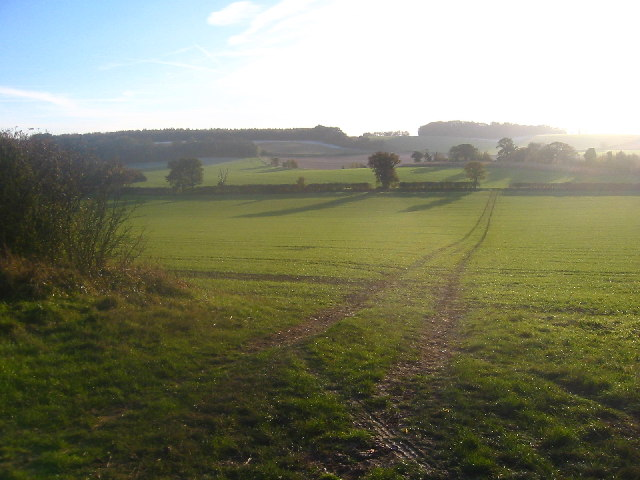 Looking south from Wards Wood, Lilley