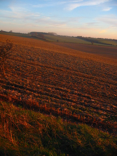 Recently ploughed field outside Luton