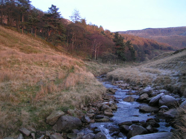 Peter Nook Wood and the River Kinder