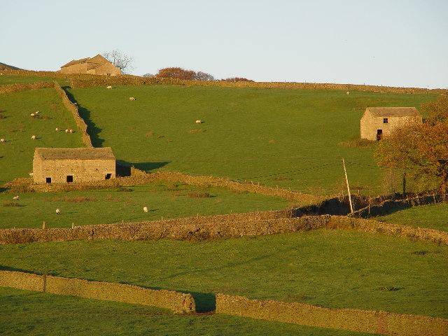 Farm Buildings and Fields, Appletreewick