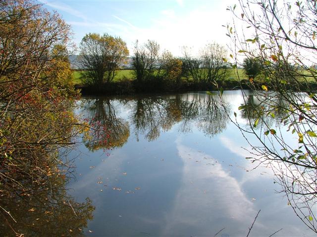 Pond, Brickyard Wood