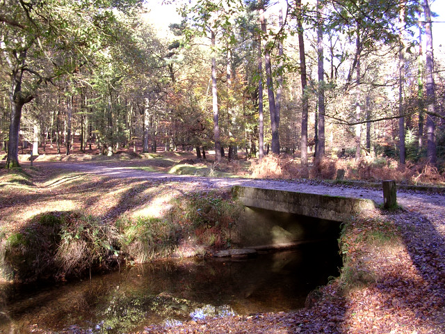 Bridge over Latchmoor Brook, Islands Thorns Inclosure, New Forest