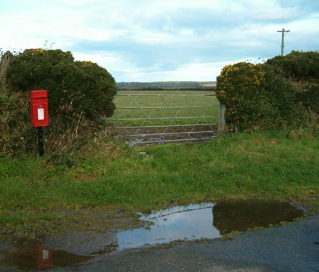 Gate, gorse and letter box
