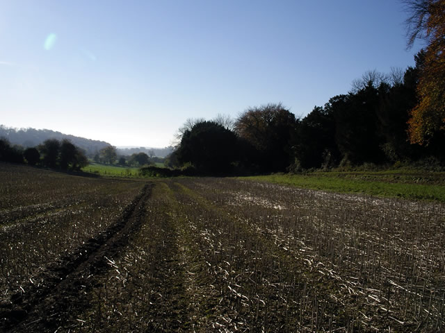 Sparsholt Road, near Pitt