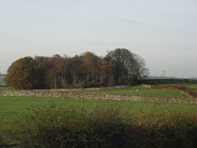 Farmland near Greystoke