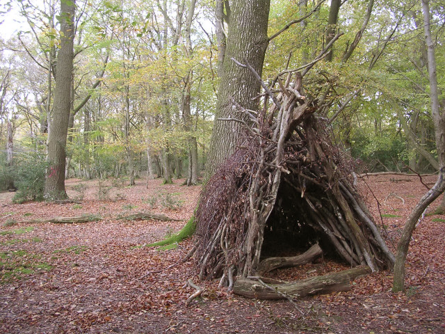Temporary wooden shelter on Lyndhurst Hill, New Forest