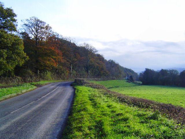 Near Leigh Cross - South Devon