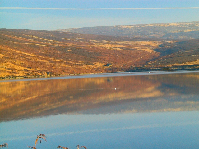 Upper Swineshaw Reflections