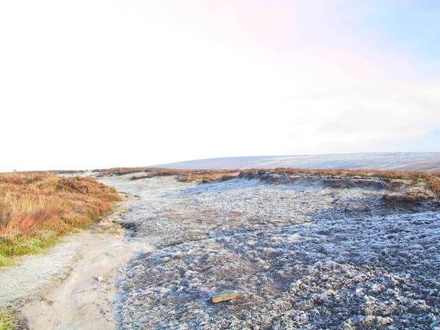 Frost on Swineshaw Moor