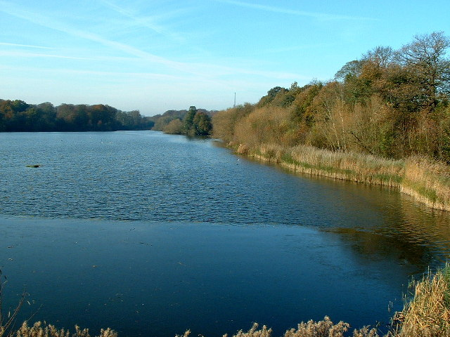 Lower Lake, Bretton Lakes Nature Reserve