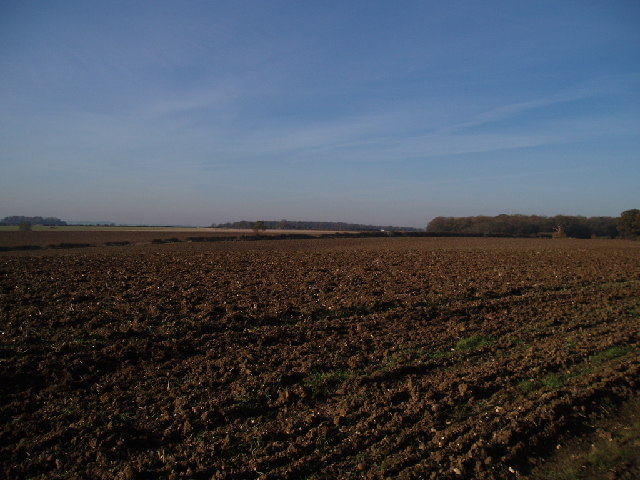 Ploughed field, looking towards Clapham