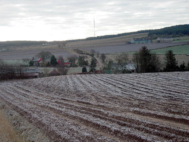 Farmland south of Whigstreet