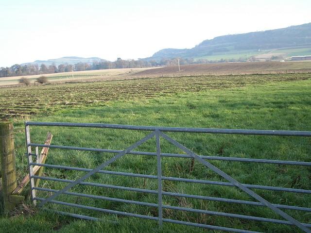 Fields at Jamesfield Farm