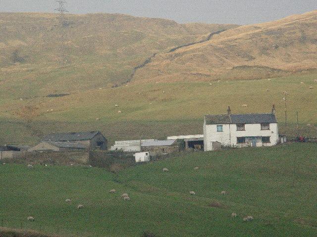 Dales Farm