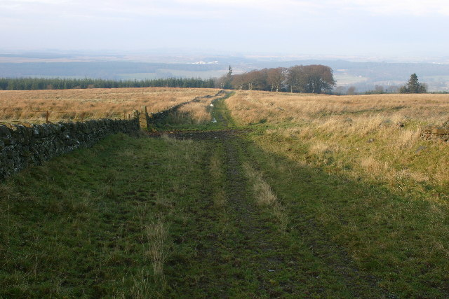 Farm track on Pagie Hill
