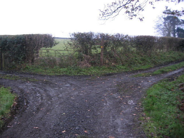 Little Broughton to Dovenby Bridleway.