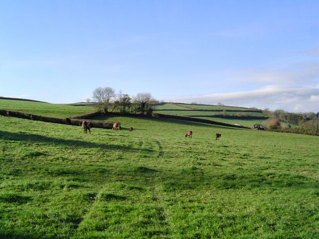 Gabwell field - South Devon