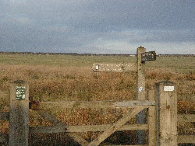 Pennine Bridleway, Deerplay Moor