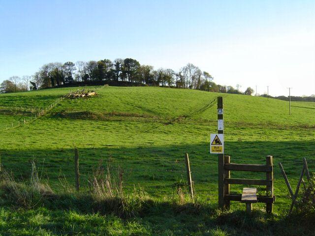 West Ogwell - Devon