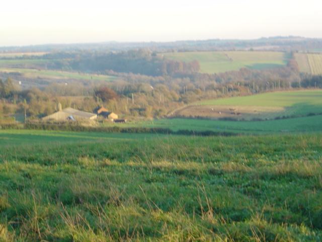Bushfield Farm