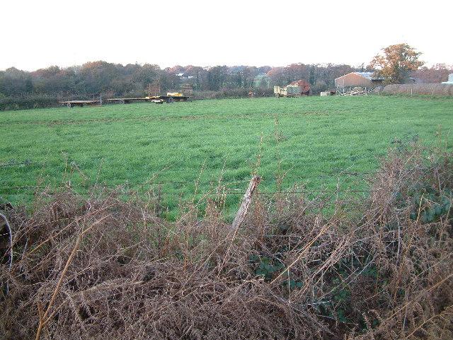 Farmland, Lower Mannington, Dorset