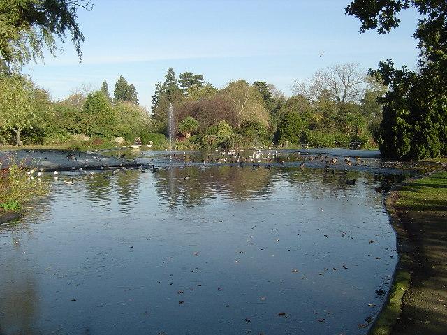 Pinner Memorial Park: The Pond