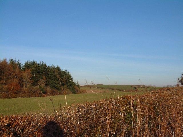 Corner of South Hayne Plantation