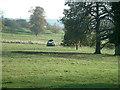 SE2912 : Yorkshire Sculpture Park by Nigel Homer