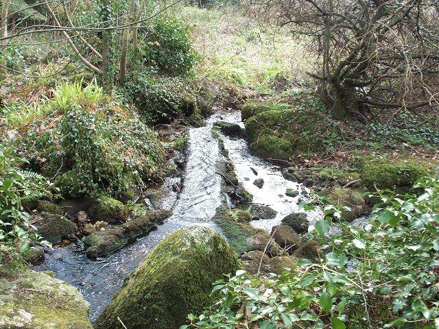 Tinner leat in Trevelloe woods